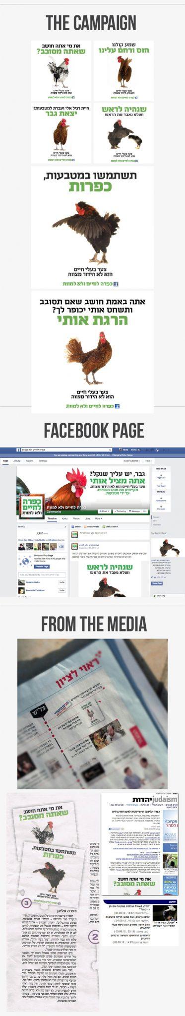 roosters, chicken, judaism, veganism, design, campaign